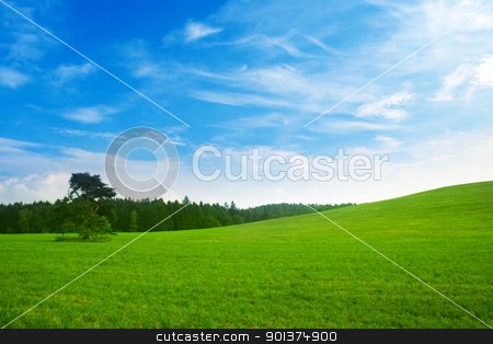 Fresh summer landscape stock photo, Fresh summer landscape - blue sky, green trees and grass by orson