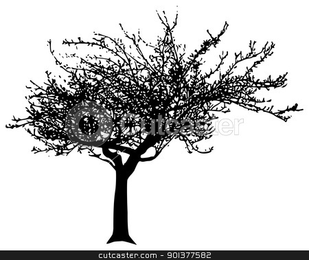 Vector tree stock vector clipart, Black vector apple tree  by orson