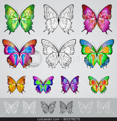 Set of different colored butterflies  stock photo, Set of different colored butterflies. Illustration on white background by dvarg