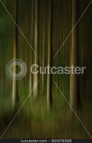 Abstract Forest stock photo, An abstract artistic photo of trees in a forest. Brooding dark image with creative blur done in camera. by thisboy
