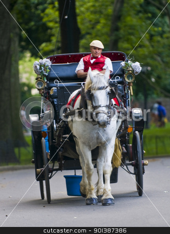 Central park stock photo, NEW YORK - JUNE 28 2011 : Horse drawn carrige riding through Central park in Manhattan.  by Kobby Dagan