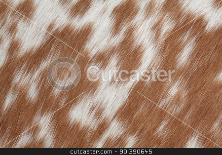 Cowhide brown stock photo, Macro photo of real brown and white cowhide. by © Ron Sumners