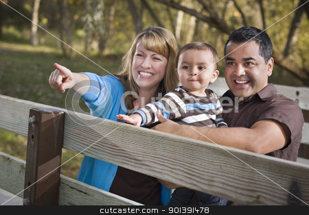 Happy Mixed Race Family Playing In The Park stock photo, Happy Mixed Race Ethnic Family Having Fun Playing In The Park. by Andy Dean