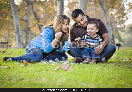 Happy Mixed Race Ethnic Family Playing with Bubbles In The Park stock photo, Happy Young Mixed Race Ethnic Family Playing with Bubbles In The Park. by Andy Dean