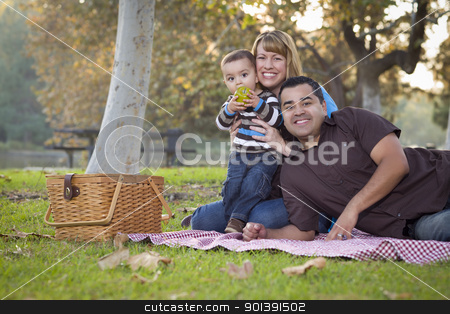Happy Mixed Race Ethnic Family Having a Picnic In The Park stock photo, Happy Young Mixed Race Ethnic Family Having a Picnic and Playing In The Park. by Andy Dean
