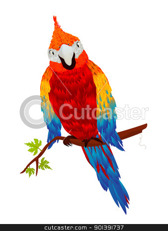 Starring parrot stock vector clipart, Starring parrot, isolated object over white background by Richard Laschon