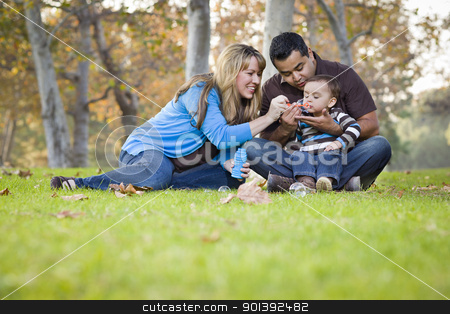 Happy Mixed Race Ethnic Family Playing with Bubbles In The Park stock photo, Happy Young Mixed Race Ethnic Family Playing Together with Bubbles In The Park. by Andy Dean