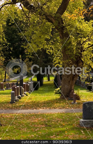 sunny day stock photo, Autumn sunny day in the cemetery