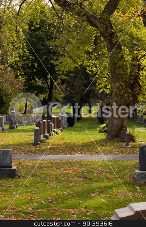 cemetery stock photo, Autumn sunny day in the cemetery by Pavel Cheiko