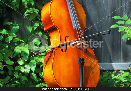 Cello. stock photo, Cello standing against a wall outside. by OSCAR Williams
