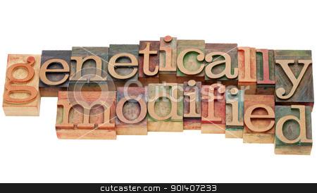 genetically modified in letterpress type stock photo, genetically modified - isolated text in vintage wood letterpress type by Marek Uliasz
