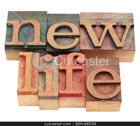new life words in letterpress type stock photo, future concept - new life words  in vintage wood letterpress printing blocks, isolated on white by Marek Uliasz