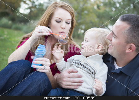 Young Parents Blowing Bubbles with their Child Boy in Park stock photo, Attractive Young Parents Having Fun Blowing Bubbles with their Child Boy in the Park. by Andy Dean