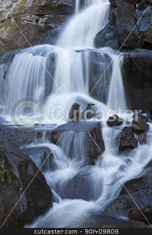 Laurel Falls stock photo, Laurel Falls in Great Smoky Mountains National Park   by Henryk Sadura