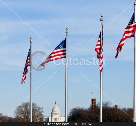 Washington Capitol stock photo, Capitol dome on a clear winter day with stars and stripes flag in foreground by Steven Heap