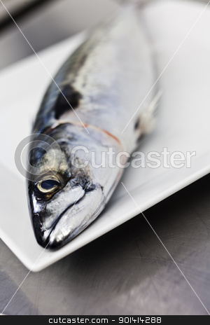 Fish on a plate stock photo, Close up of fish on a plate by Anne-Louise Quarfoth
