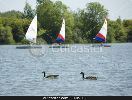 Sailing dingy's stock photo, Sailing dingy rosswell Pits, Ely  by Martin Garnham