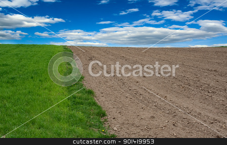 Field stock photo, Field by vtorous