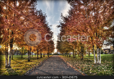 Vivid Fall stock photo, HDR  by Svilen Andreev