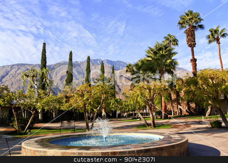 Fan Palms Trees Blue Fountain Palm Springs California stock photo, Fan Palms Trees Blue Fountain Palm Springs California washingtonia filifera by William Perry