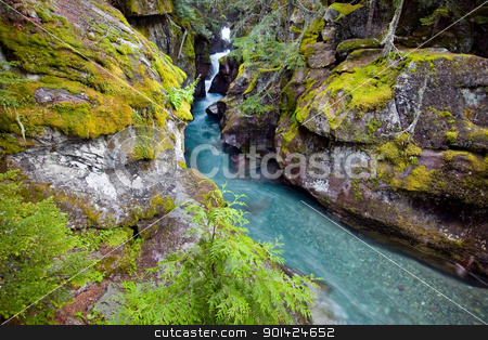 Avalanche Gorge stock photo, Avalanche Gorge in Glacier National Park, North America by Bryan Mullennix