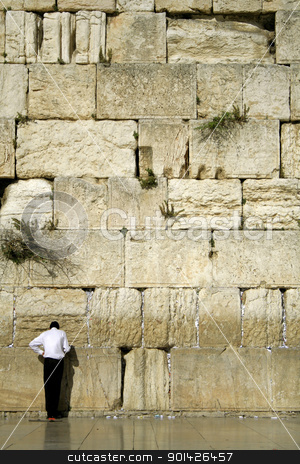 wailing western wall stock photo, Hasidic jew at the wailing western wall, jerusalem, israel by Paul Prescott