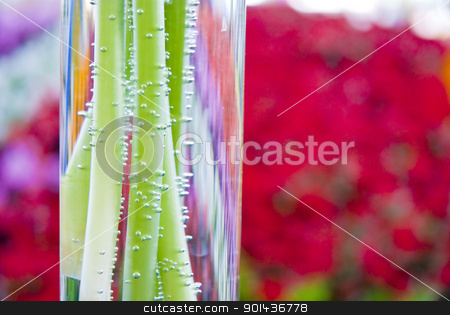 Beautiful colorful flower background stock photo, Beautiful colorful flower background by mozzyb