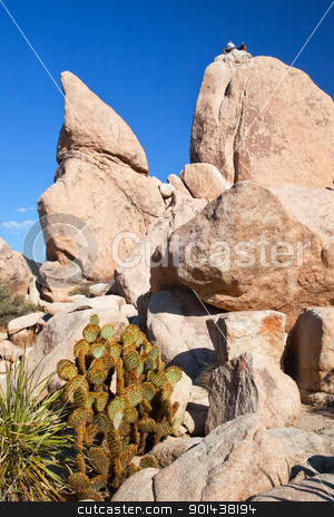 Rock Climb Hidden Valley Joshua Tree National Park California stock photo, Rock Climb Hidden Valley Big Rocks Prickly Pear Cactus Mojave Desert Joshua Tree National Park California by William Perry