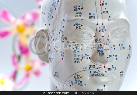 Acupuncture head model stock photo, Acupuncture head model by Hans-Joachim Schneider