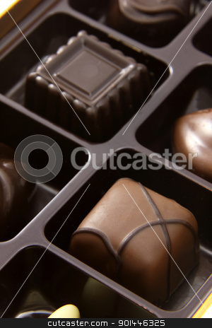 Chocolate Square Truffles stock photo, A closeup of a box of chocolate truffles.  by Chris Hill