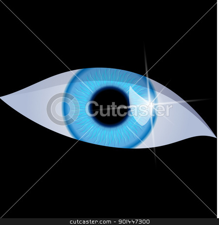 Human eye stock photo, Human eye isolated on a black background. Vector illustration by dvarg