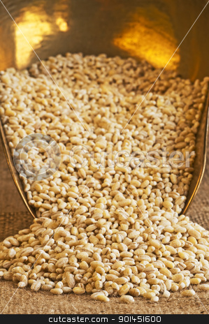 barley pearls stock photo, barley pearls by Hans-Joachim Schneider