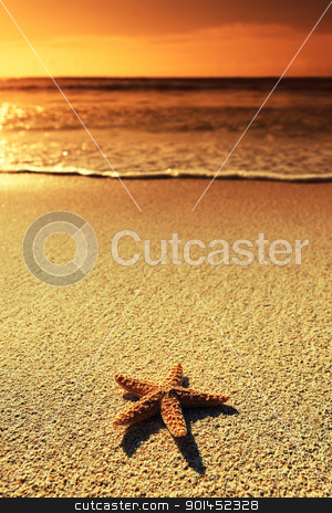 sunset sea star stock photo, Summer vacations - starfish on sunset sea sand beach  by vwalakte