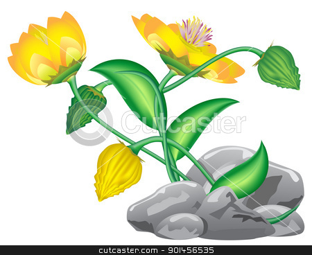 fantasy flower stock vector clipart, fantasy flower growing from rocks isolated on white by Evgeniy Shadrin