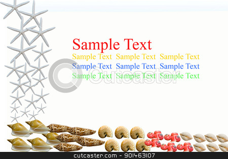 isolated many kind of shellfish on white background stock photo, isolated many kind of shellfish on white background by Komkrit Muangchan