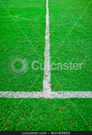 white line in green grass sport field stock photo, white line in green grass sport field by Yuttasak Jannarong