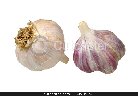 garlic isolated on white background stock photo, two heads of garlic isolated on white background by Rusgri
