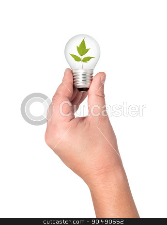 Light bulb in hand with leaves inside. stock photo, Light bulb in hand with leaves inside.  by Borys Shevchuk