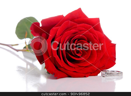Diamond Ring and Rose stock photo, A diamond ring and rose, isolated against a white background. by Richard Nelson