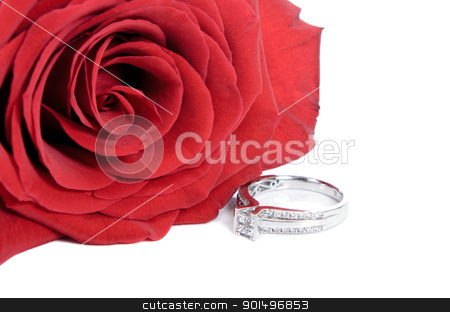 Engagement Ring stock photo, Diamond engagement ring and a red rose, isolated on a white background. by Richard Nelson