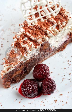 Blackberry cake slice stock photo, fresh baked Blackberry cake closeup by olinchuk