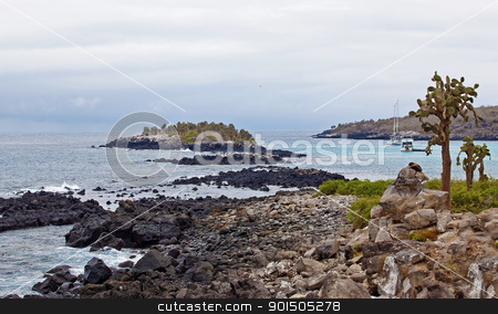 Santa Fe stock photo, View over cacti and weathered cliffs at Barrington Bay, Galapagos by Kjersti Jorgensen