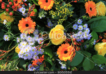mixed flower arrangement in yellow and orange stock photo, Mixed flower arrangement in yellow and orange by Porto Sabbia