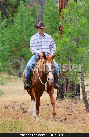 Cowboy stock photo, Cowboy working his horse in the field by Vanessa Van Rensburg