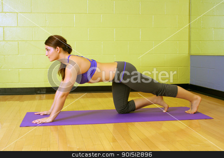 Beautiful Female Athlete at a Gym (3) stock photo, A lovely young, athletic brunette stretches on a mat at a gym. by Carl Stewart