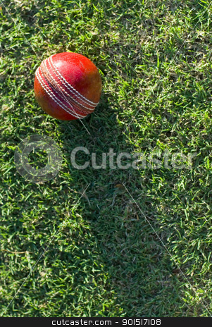 Cricket Ball On Grass stock photo, A red cricket ball on green grass casting a long shadow down the length of the frame, with copyspace by Stephen Gibson