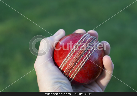 Hand Holding Cricket Ball stock photo, Bowler's hand holding a red cricket ball over green grass. by Stephen Gibson