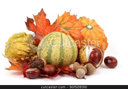 autumnal decoration stock photo, autumnal decoration by FranziskaKrause