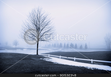 Winter scene stock photo, Trees in snow landscape in winter time by Sreedhar Yedlapati