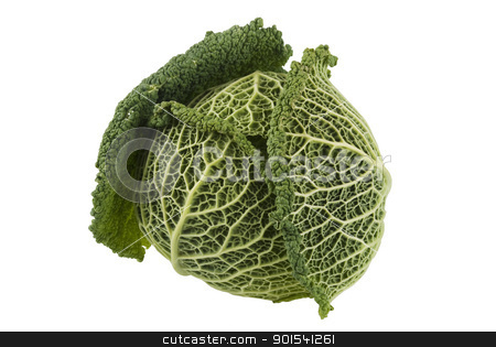 Kale Cabbage stock photo, One fresh kale isotaled on white background by Tiramisu Studio